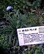 20070705193644.jpg