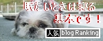 応援よろしくなり~♪人気blogランキングへ