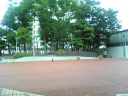 DVC00267.jpg