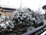 雪のなかで