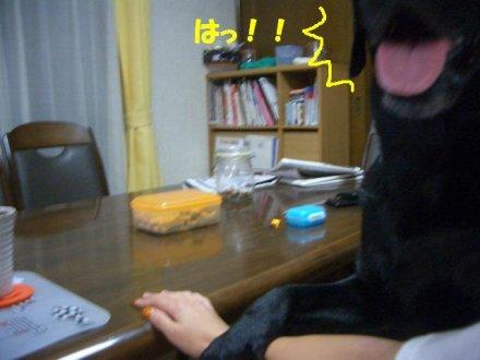CIMG2011_6.jpg