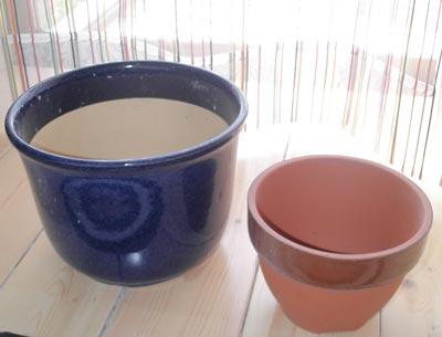 sigaraki土産-植木鉢