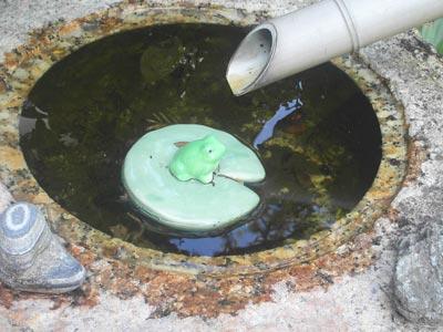 浮かぶ蛙2