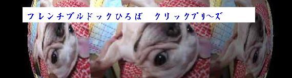 20070810052128.jpg