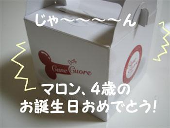 cakehako.jpg