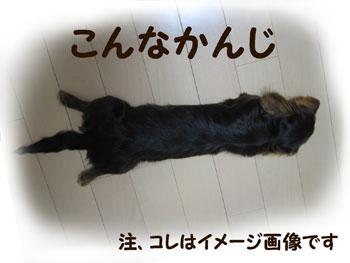 ime-ji_20070921164346.jpg