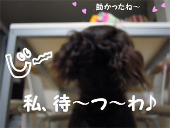 matsuwa2.jpg