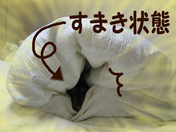sumasuma1.jpg