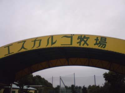 20071011073942.jpg