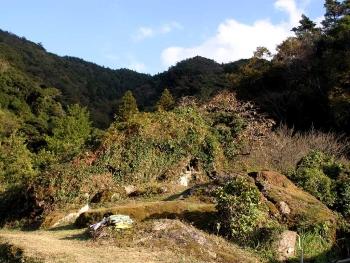 山中の馬蹄石(道路側より)