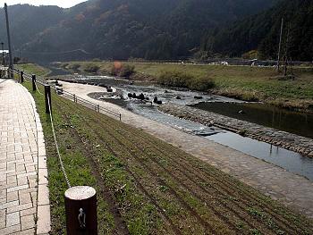 ビオトープのある大田川-1