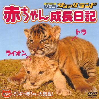 秋吉台サファリランド『赤ちゃん成長日記』DVD