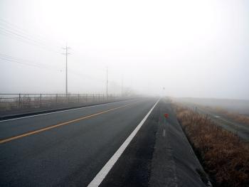 中原ポリエ(県道28号線付近)