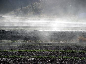 朝靄の立ち昇る風景-1
