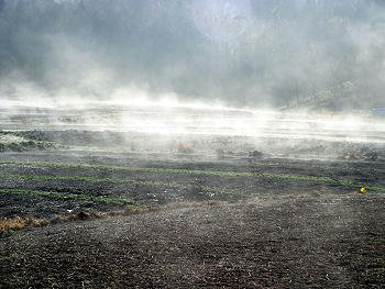 朝靄の立ち昇る風景-2