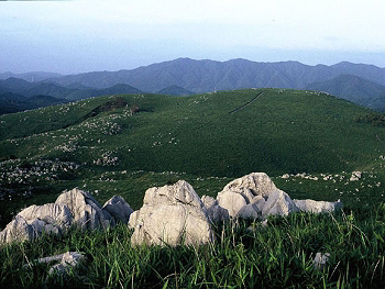 第46回全日本登山体育大会の舞台・秋吉台