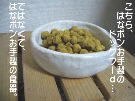18101_5.jpg