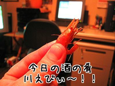 100_0029_4.jpg