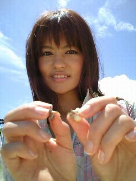 可愛い沖縄のヤドカリさんです 今も元気に暮らしているといいな~!