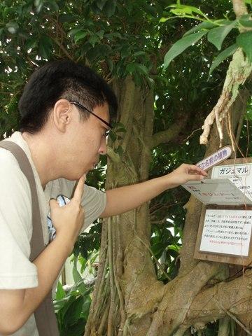 200700818-61.jpg