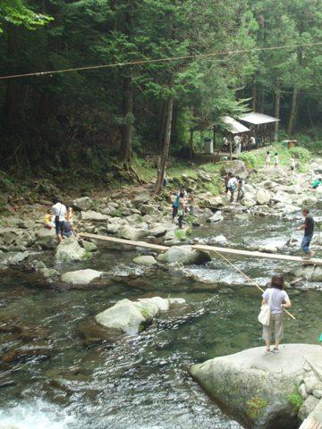 200700818-71.jpg