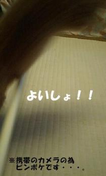 20070915170937.jpg