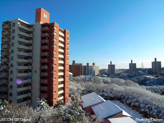 雪景色1 GR Digital: ISO64, 絞り優先AE, WBオート, EV0, F8.0, 1/250s, sRGB