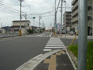 P1000804-2.jpg