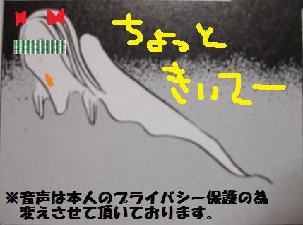 20070815052133.jpg