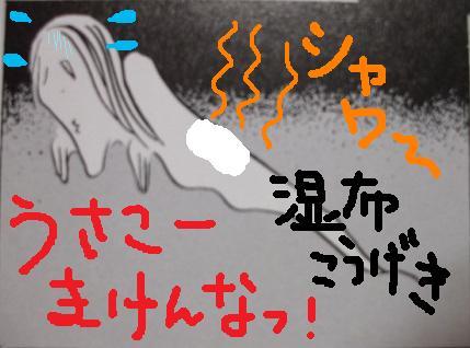 DSCF0764 - コピー (9)