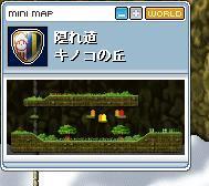 Maple18.4.28.jpg