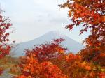 田貫湖からの富士山と紅葉