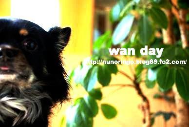 wanday