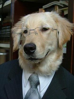 人犬費はどうなってるのかね?