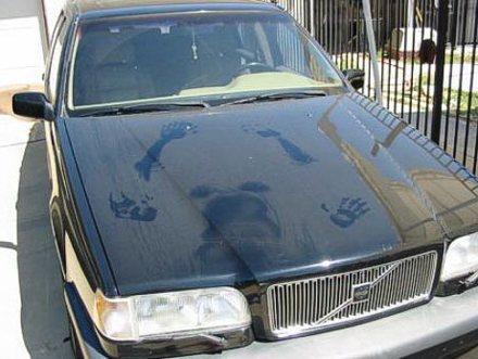 車の汚れすらネタになる