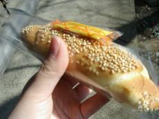 ブノワトン ドイツ風パンのゾーセージドッグ1