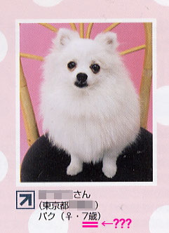 dogfan0.jpg