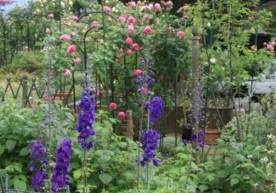 garden0701