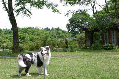 karuizawa4
