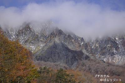 20061109181812.jpg