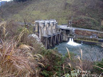 目地半島から見た社ダム堰堤