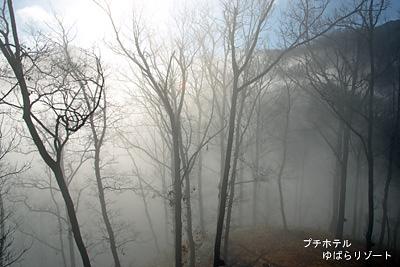 霞ヶ丘公園