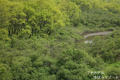 湯原湖の新緑