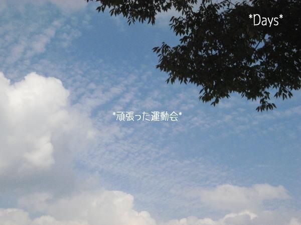 20061015095000.jpg