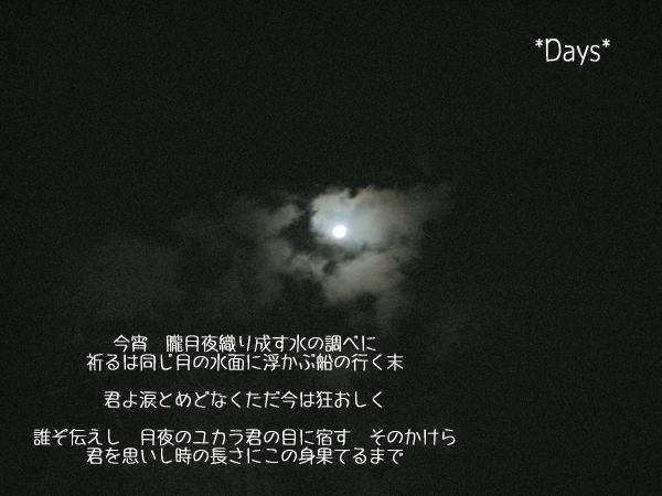 20061203235202.jpg