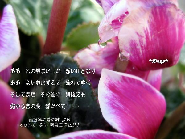 20070219005103.jpg