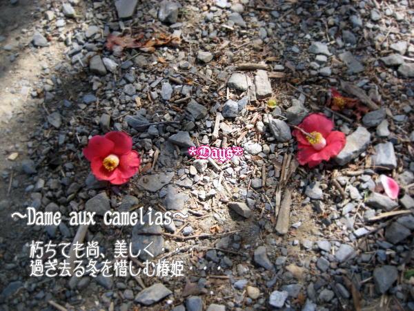 20070304202951.jpg