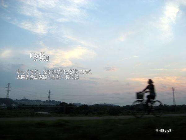 20070828012330.jpg