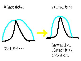 20070105140309.jpg