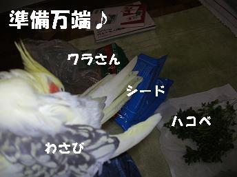 20070119164742.jpg